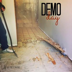 demo-day-_pin