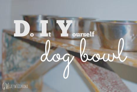 dog-bowl-pinterest