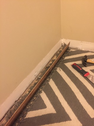 trim-removal3