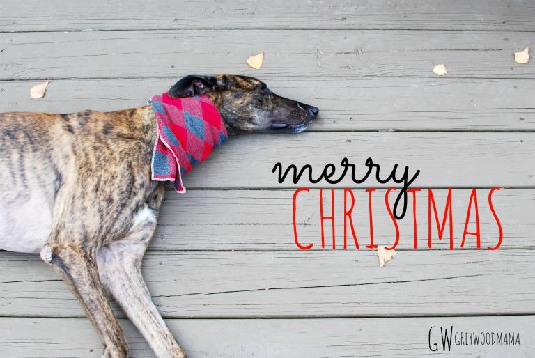 merry-christmas-roman