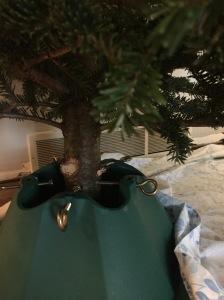 tree-base