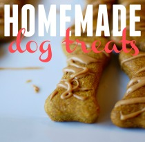 homemade-dog-treats_close-up_pin