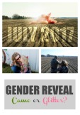 gender-reveal_pin