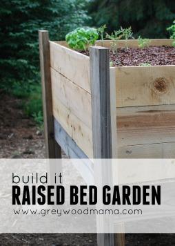 raised bed_PIN