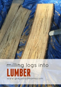 Logs1_PIN